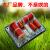 高低音二分周器AS 23 Cタイプの高音階電子分周器をカスタマイズします。